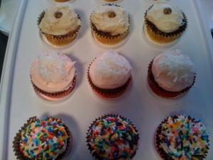 cupcakes4241
